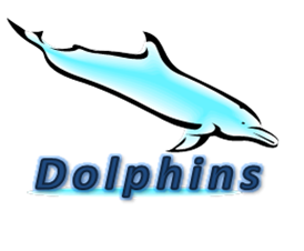 Dolphins-9